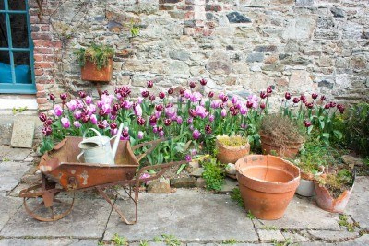 El tulip n codiciado objeto de deseo for Carretillas para jardin