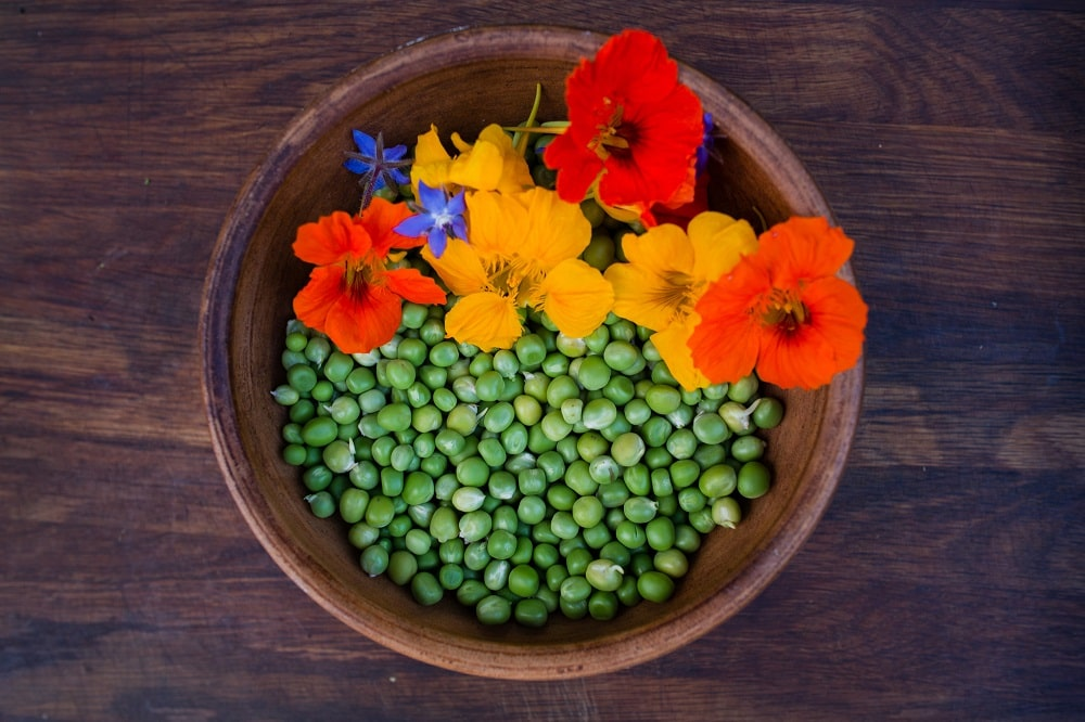 flores para decorar tus platos